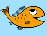 Disegno Pesce  pitturato su mieel