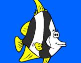 Disegno Pesce tropicale  pitturato su claudia