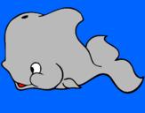 Disegno Balena pitturato su mieel
