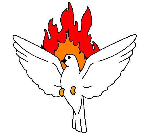 Estremamente Disegno Colomba della Pentecoste colorato da Utente non registrato  GW17