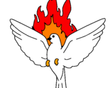 Disegno Colomba della Pentecoste  pitturato su Spirito Santo