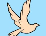 Disegno Colomba della pace in volo pitturato su claud1i10