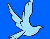 Disegno Colomba della pace in volo pitturato su kevin