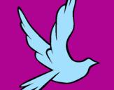 Disegno Colomba della pace in volo pitturato su lucia