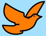 Disegno Colomba della pace  pitturato su alex