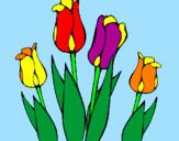 Disegno Tulipani  pitturato su ede