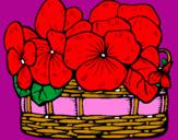 Disegno Paniere di fiori 12 pitturato su angela