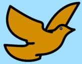 Disegno Colomba della pace  pitturato su Marianci :)