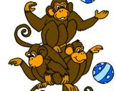 Disegno Scimmie giocoliere pitturato su ANGELA