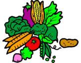 Disegno verdure  pitturato su manuel