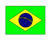 Disegno Brasile pitturato su Nicole Eleonora