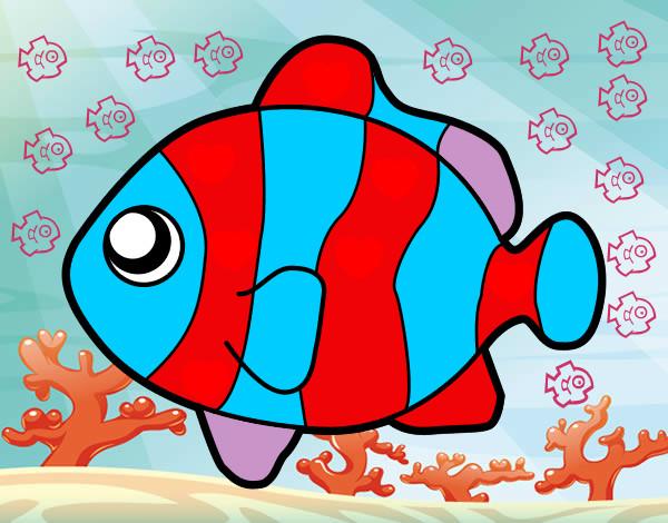 Disegno Pesci Pagliaccio Colorato Da Marty Il 13 Di Marzo Del 2012