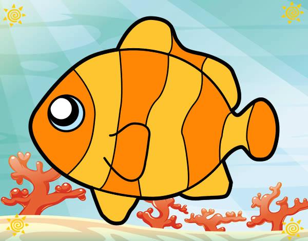 Disegno Pesce Pagliaccio Colorato Da Rocksana Il 29 Di Marzo Del 2012