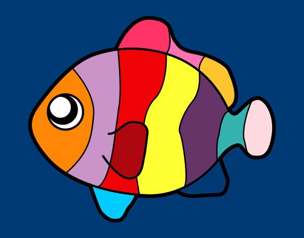 Disegno pesci pagliaccio colorato da sadik il 01 di aprile for Disegni da colorare pesci