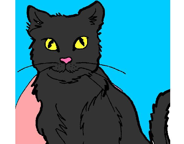 Disegno il gatto nero colorato da fuocherina il 14 di - Gatto disegno modello di gatto ...