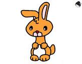 Disegno Art il coniglio  pitturato su lau452000