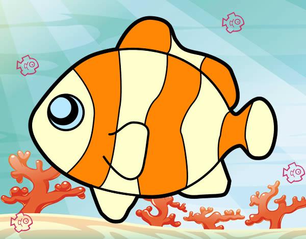 Disegno Nemo Colorato Da Florabloom Il 15 Di Agosto Del 2012