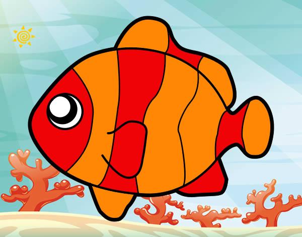 Disegno Pesci Pagliaccio Colorato Da Martina 93 Il 16 Di Agosto Del 2012