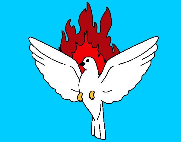 Disegno Colomba Della Pentecoste Colorato Da Bianca03 Il 29
