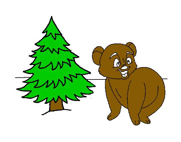 Disegno Orso Cerca Il Miele Nell Abete Colorato Da Vegekuo Il 03 Di