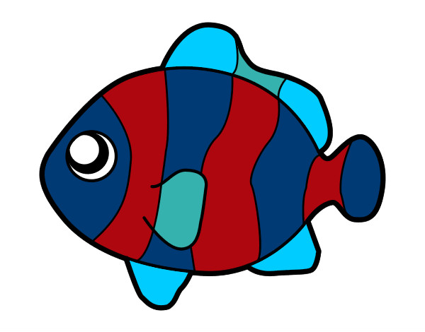 Disegno pesce palla colorato da lollo il 03 di novembre for Pesce palla disegno