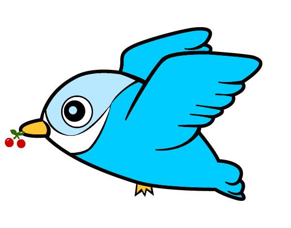 Disegno cipi colorato da fede100 il 02 di dicembre del 2012 - Semplici disegni di uccelli ...