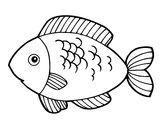 Disegno Pesce da mangiare pitturato su elpulpo