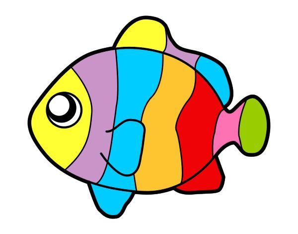Disegno peccolino colorato da lucagibbs il 06 di gennaio for Disegni di pesci da colorare per bambini
