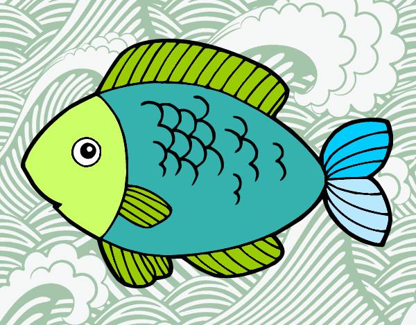 disegno pesce da mangiare colorato da monci il 13 di