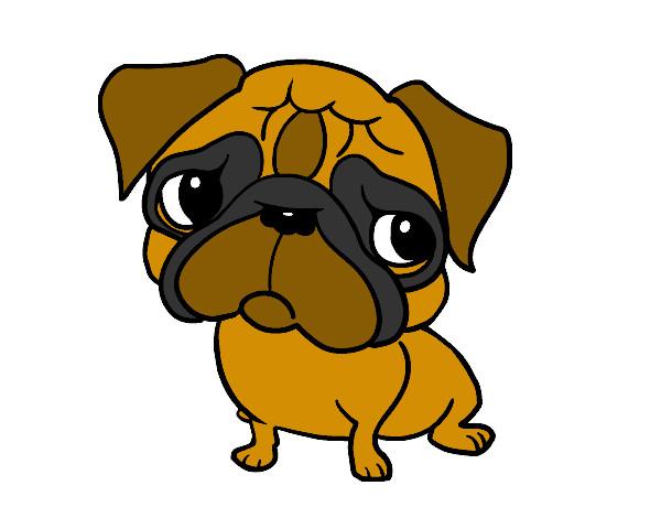 Da colorare disegno libero cane disegno facile come for Cieffe arredi di chiappini federico rimini
