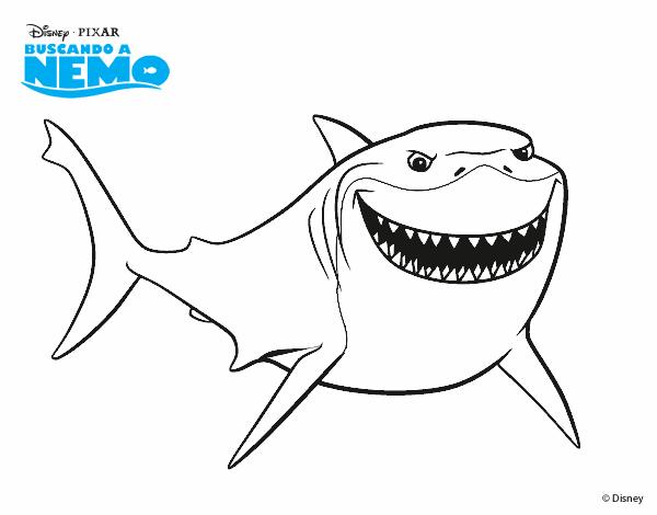 Disegno Alla Ricerca Di Nemo Bruto Colorato Da Utente Non