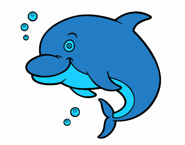 Disegno delfino delle amazzoni colorato da utente non for Delfino disegno da colorare