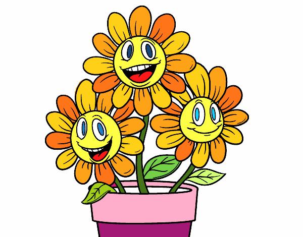 Disegno un vaso di fiori colorato da utente non registrato for Fiori di agosto
