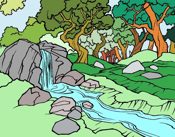 Disegno paesaggio della foresta con un fiume colorato da for Disegni di paesaggi colorati