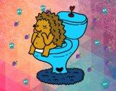 Riccio in bagno