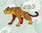 Un ghepardo