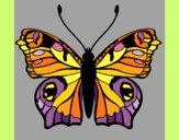 Disegno Farfalla 20 pitturato su gaga