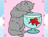 Disegno Gatto che osserva il pesciolino  pitturato su gaga