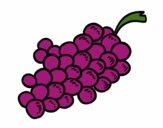 Grappolo d'uva rossa