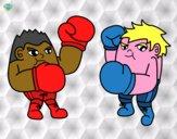 Incontro di boxe