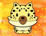 Un cucciolo di ghepardo
