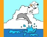 Delfino e gabbiano