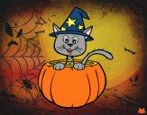 Gattino di Halloween
