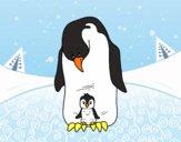 Pinguino con il suo bambino