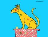 Gatto egiziano II