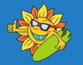 Sole surfer