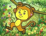 Scimmia che pende da un ramo