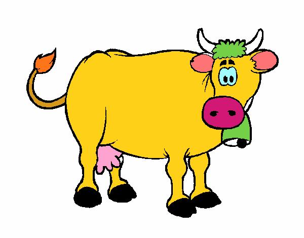 Mucca da latte