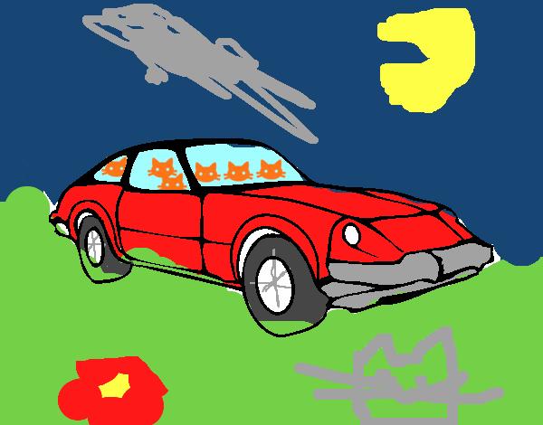 Auto sportiva