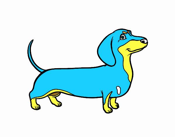 Disegno Cane Bassotto Colorato Da Utente Non Registrato Il 05 Di